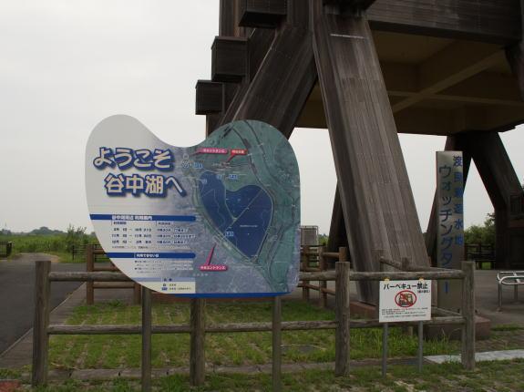 渡良瀬遊水地!_a0268377_21122843.jpg