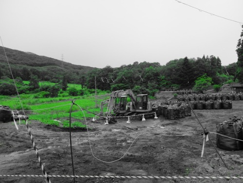 晴れのち雨 6:消えゆく庭_a0180681_0292145.jpg