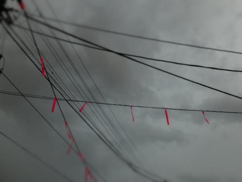 晴れのち雨 6:消えゆく庭_a0180681_0331692.jpg