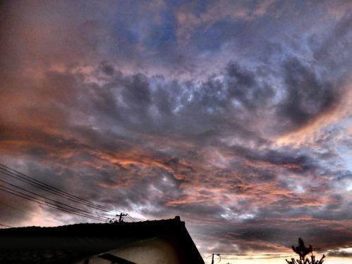 晴れのち雨 6:消えゆく庭_a0180681_0341576.jpg