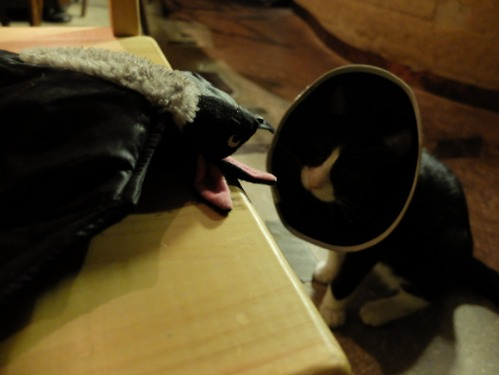 ワルい茶碗割れました_a0180681_2234277.jpg