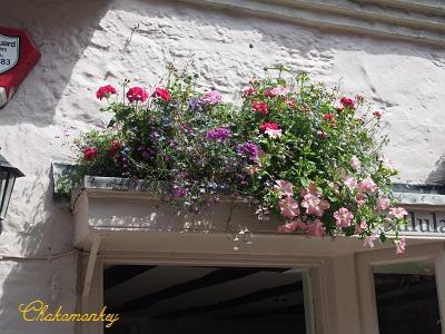 可愛いアンティークの街、Petworth_f0238789_18253618.jpg