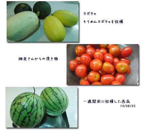 ブルーベリーの収穫_c0051105_10465186.jpg