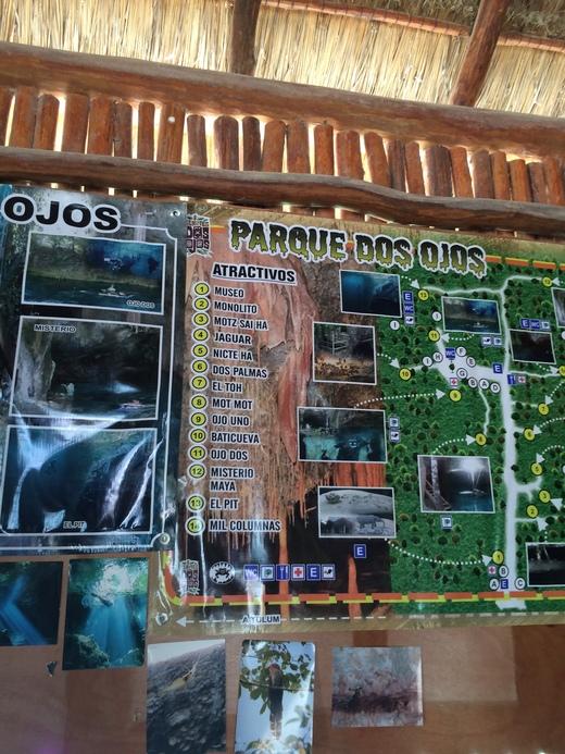 Cenotes Dos Ojos ひとりセノーテ ドスオホス_b0129832_1165463.jpg