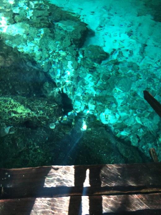 Cenotes Dos Ojos ひとりセノーテ ドスオホス_b0129832_1261777.jpg