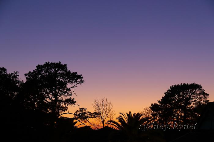 morning glow_f0084337_20195992.jpg