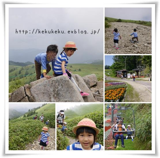 d0202941_2365932.jpg