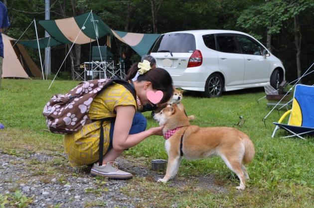 戸隠キャンプ2014④ コタさんがキター!_a0126590_00184963.jpg