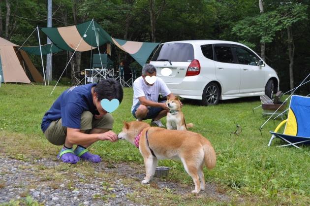 戸隠キャンプ2014④ コタさんがキター!_a0126590_00190506.jpg