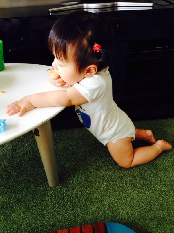 シオン2歳11ヶ月、みつき10ヶ月になりました!_e0253026_10195313.jpg