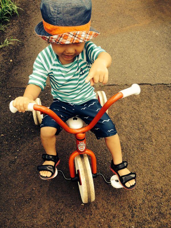 シオン2歳11ヶ月、みつき10ヶ月になりました!_e0253026_10195624.jpg