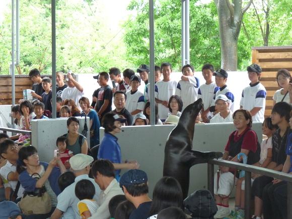 第25回岐阜県中学選抜軟式野球大会_d0010630_2212847.jpg