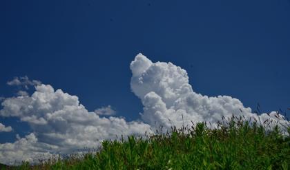 やっぱりこの時期にはこんな空が似合いますが.......明日以降..._b0194185_22573340.jpg