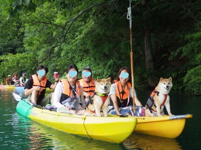 戸隠キャンプ2014⑤ 青木湖でカヤック_a0126590_12195059.jpg