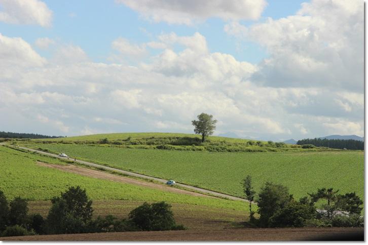 美瑛の丘と雲(8・13)_f0146493_1542999.jpg