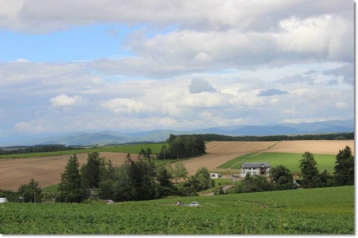 美瑛の丘と雲(8・13)_f0146493_155231.jpg