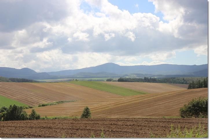 美瑛の丘と雲(8・13)_f0146493_155265.jpg