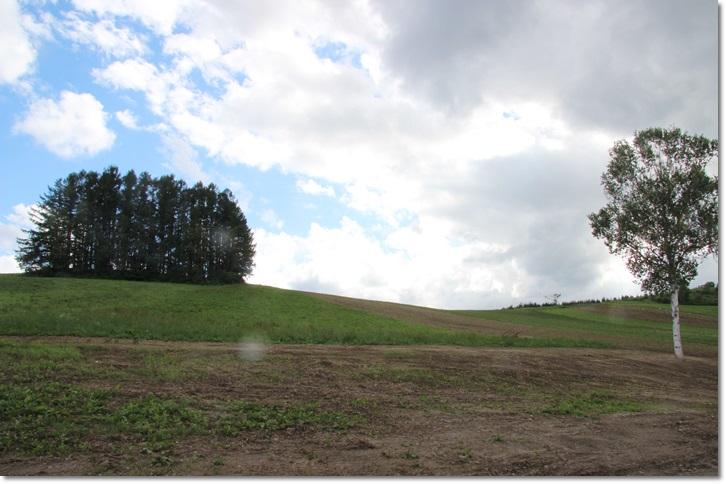 美瑛の丘と雲(8・13)_f0146493_1564094.jpg