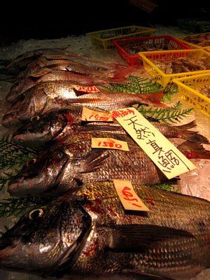 げんき横丁「魚太郎」_c0141652_1654294.jpg