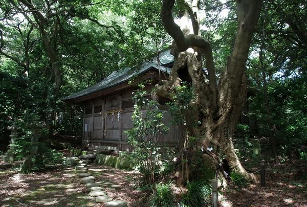 福井県、雄島探訪_a0248481_2030091.jpg