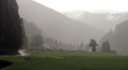 京ヶ原水路周辺の道路は大雨の影響もあって水浸し....._b0194185_2303746.jpg
