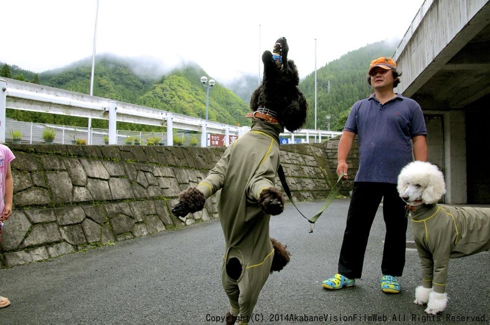 8月16〜17日滝沢サイクルパークの風景VOL1_b0065730_1343019.jpg