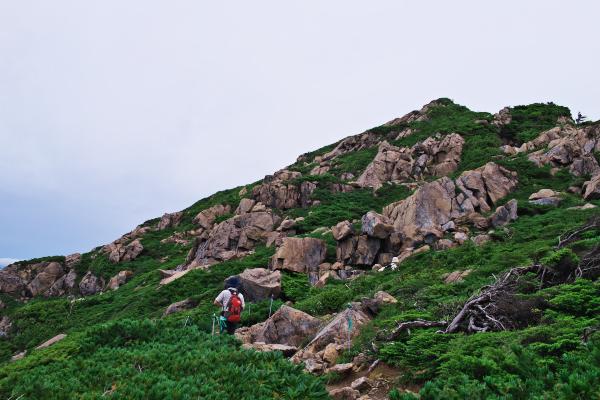 山散歩~_c0179360_21483856.jpg