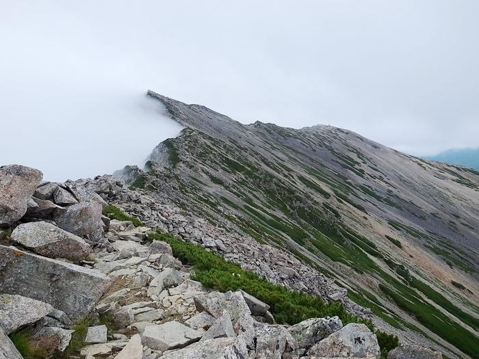 2014.8.13-14 北アルプス TJARを途中まで歩いて追いかけてみる旅 day2_b0219778_2159828.jpg