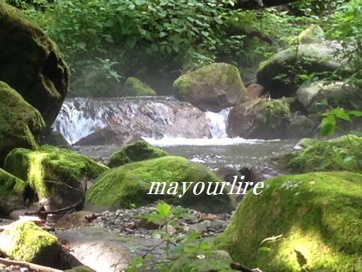 神秘的な渓流_d0169179_020326.jpg