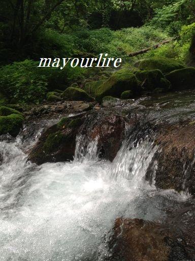神秘的な渓流_d0169179_0364138.jpg