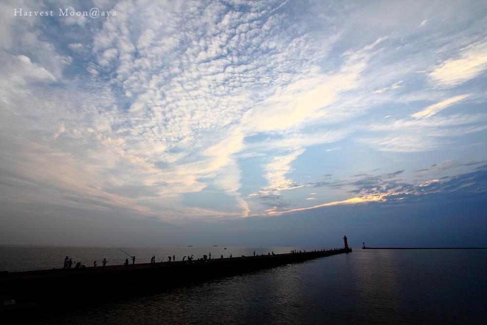 雲へと続く道_b0208495_2104868.jpg