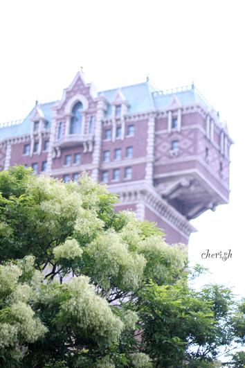 そうだ、東京ディズニーランドへ行こう!_b0208604_20303970.jpg