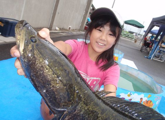 Ratty Twister SNAKEHEAD COMPE 2014_a0153216_232528100.jpg