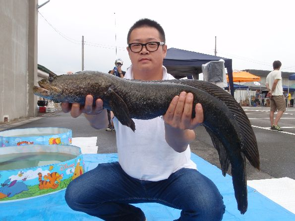 Ratty Twister SNAKEHEAD COMPE 2014_a0153216_23312939.jpg