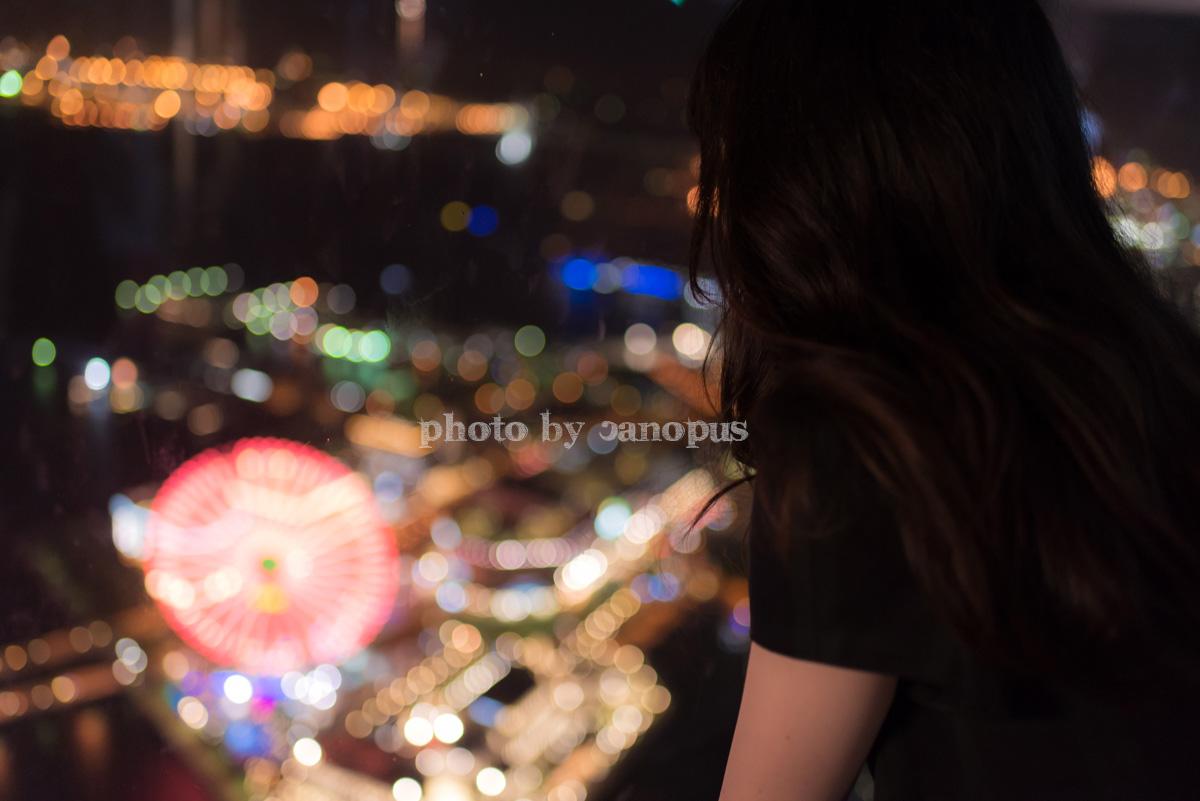 霞ゆく高層ビルからの夜景_e0196140_0362357.jpg
