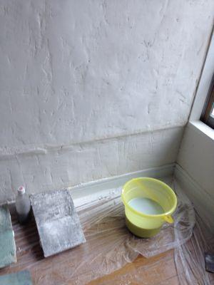 shizenの壁_b0132442_2056297.jpg
