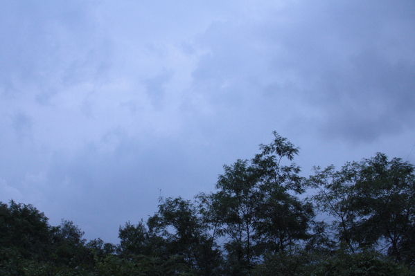 Cloudy sky_d0074074_16431925.jpg