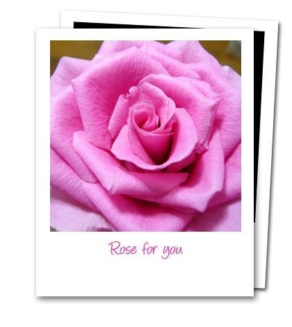 君のための薔薇_d0227799_10165878.jpg
