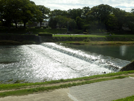 夏の終わり 鴨川_e0048413_2313880.jpg