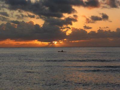 14年7月ハワイ 17★カメとの遭遇、再び_d0285416_824889.jpg