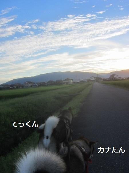 f0143123_2112913.jpg