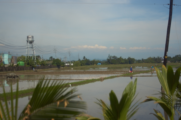 To and from Calapan_e0202828_14062671.jpg