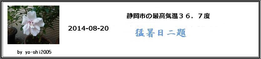 e0033229_2039446.jpg
