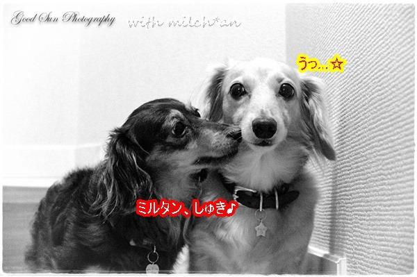 b0115642_22293638.jpg