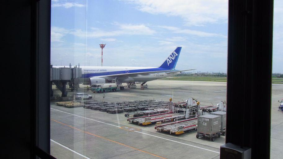 8月15日~18日(雨・くもり・晴れ)タイトル:沖縄遠征その2_f0105542_81425.jpg
