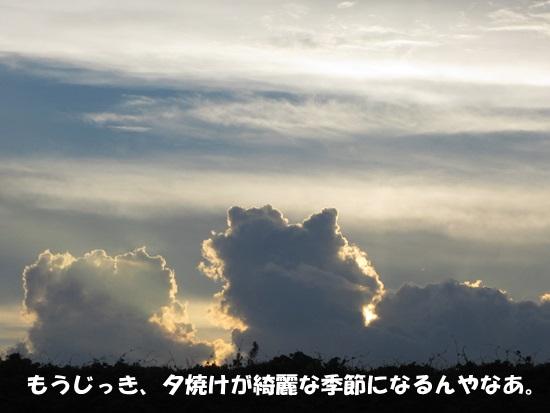 b0149072_1719321.jpg