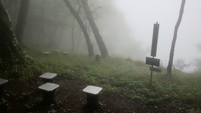 マスキ嵐沢ー権現山南側の尾根_c0145582_7354521.jpg