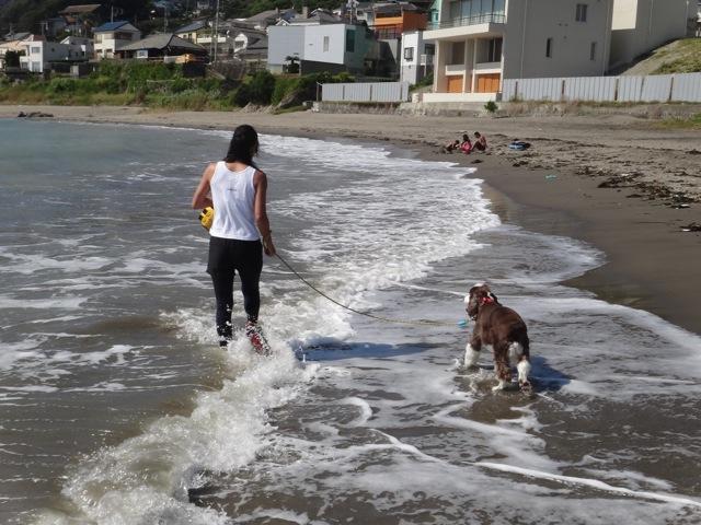 gaga & noa  /  Beach_b0195093_06224440.jpg