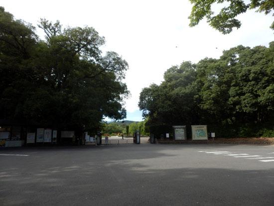 空は秋 植物園で_e0048413_23454729.jpg