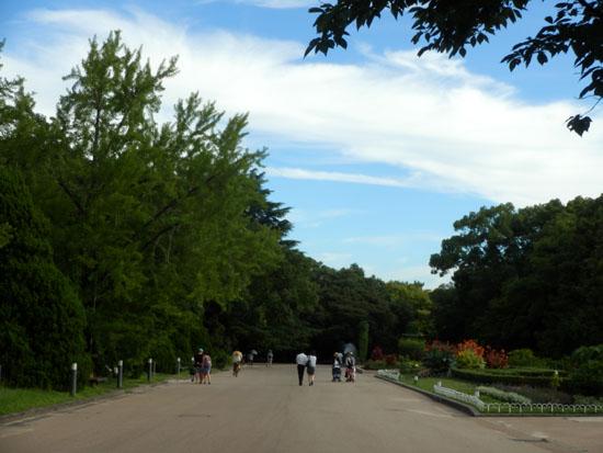 空は秋 植物園で_e0048413_2346364.jpg